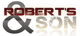 the robson logo.png
